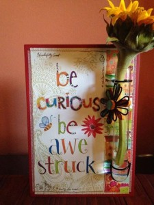 Be Curious Be Awe Struck