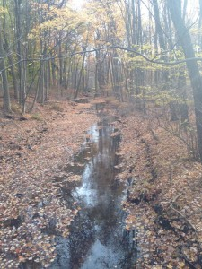Franklin Lakes Trail 11.2015