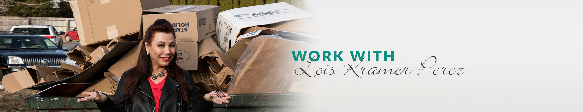 WorkWithLoisBanner